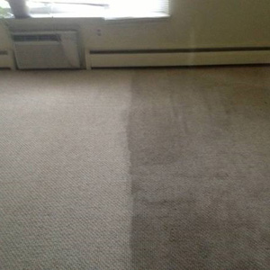 half cleaned carpet